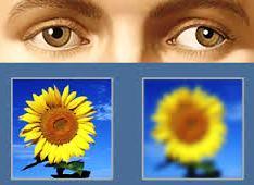 Какие глазные капли для профилактики глазного давления